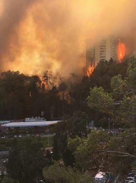 Wild Fires in Israel